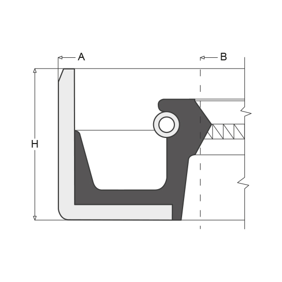 Oil Seals Rotary Shaft Oil Seals Rubber End Covers Fp